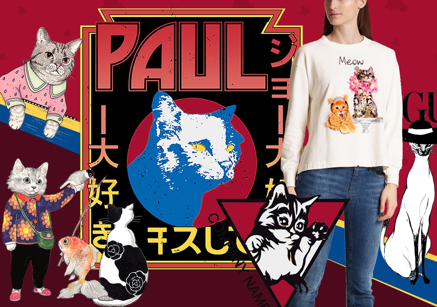 Cat -- 19/20 A/W Pattern Trend for Womenswear