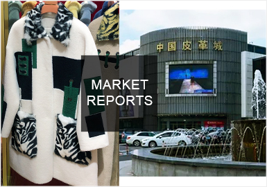 Redefine Fashion -- The Analysis of Women's Fur in Haining Market
