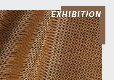 Exquisite Sensory -- The Fabric Analysis of Paris Première Vision Online Exhibition